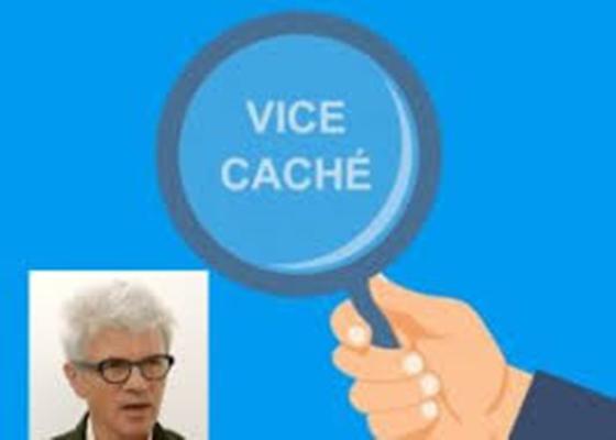 LES VICES CACHES REDIM